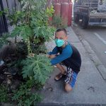The Tree Plantation Campaign